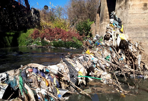 Trash and Litter flowing down the Hennops River and damaging the vegetation and nartural habitat
