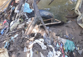 This waste and pollution collected on the Riverbanks of the Hennops and was cleaned up by Lewende Woord youth